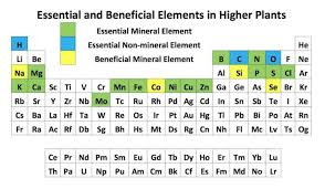 Parts Of Periodic Table Essential Plant Elements Hort Americas