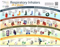 Inhalers For Aerd Samters Triad The Samters Society
