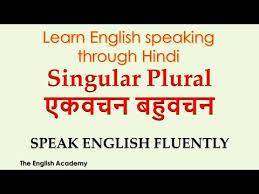 Singular And Plural Nouns Chart Singular And Plural Nouns Examples Definition List Exercises