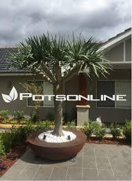 garden pots planters australia