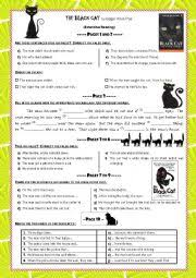 the black cat reading activities correction
