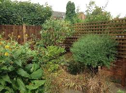 how to hide a fence barnard fencing
