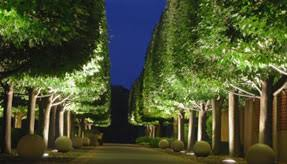 landscape lighting trees. Unique Trees Uplighting On Trees Showcase Your Property Landscape Lighting  Intended Lighting Trees