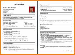 Enchanting B Com Resume Format Frieze Documentation Template