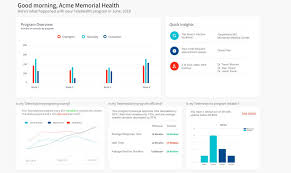 Dashboard Design Guidelines Top Data Visualization Examples And Dashboard Designs