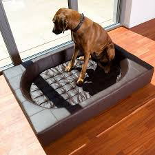 Fancy dog beds – fortable and trendy pet furniture ideas