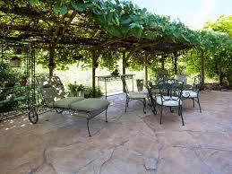 Terrace and Garden: Cozy Grape Arbor Garden Decoration - Grape Arbor