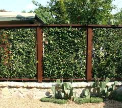 outside room dividers awesome rooms outdoor privacy screens ideas within with regard to 12