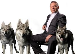 Personal Injury Law Firm | Nashville, TN | The Wolf Pack