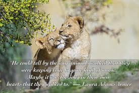 Love Animals Quotes Amazing 48 Quotes About Animals That Will Make You A Better Human