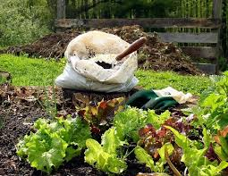 garden compost. Contemporary Compost Save Plastic Bags To Use For Storing Finished Compost Inside Garden Compost T