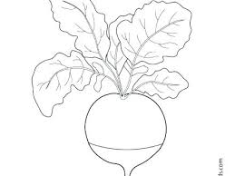 Printable Fruit And Vegetable Coloring Sheets Fruits Vegetables