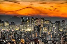 أحياء طوكيو الخاصة - ويكيبيديا