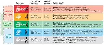 Pulse Rate Chart Heart Rate Chart Heart Pulse Chart