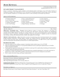 Luxury Executive Resume Resume Pdf