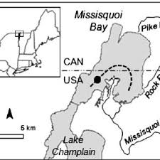 Northern Lake Champlain Showing Fi Eld Transect And Vtdec