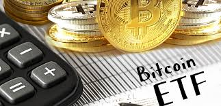 Too bad the etf does not provide a dividend but it's not surprising as this is a growth etf and not an. Bitcoin Etf Awaiting Institutional Cryptocurrency Investments