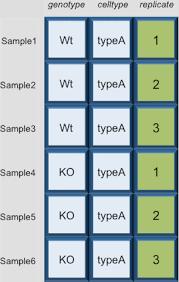 data wrangling dataframes matrices