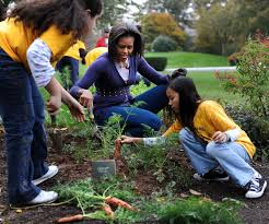 Michelle Obama Kitchen Garden Melania Trump Is Keeping Michelle Obamas White House Vegetable