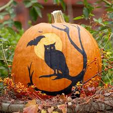 owl theme pumpkin pattern