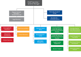 Whs Organization Chart Prototypic Nba Hierarchy Chart 2019