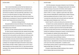 apa essay example co apa essay example