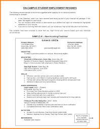Examples Of Objectives On Resumes 100 Sample Objective For Resume Resume Type 41