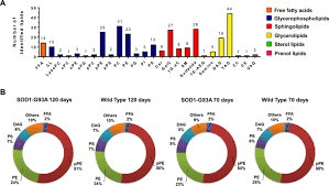 alterations in lipid metabolism of