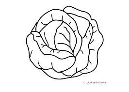 Cabbage Vegetable Coloring Page For Kids