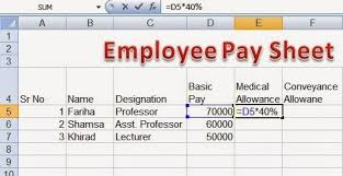 Salary Chart In Excel Format Perfect Computer Notes Employee Pay Sheet Formulas In