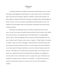 into the wild chapter  into the wild essay samson`s works of literature