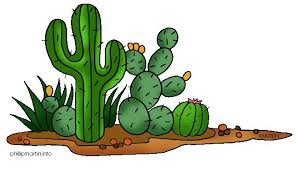 Image result for free cactus clipart