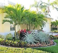 low landscape plants best landscaping plants for the tropical garden is a garden concept designed to low landscape plants