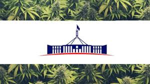Buy weed online Canberra Where to Buy Marijuana in Canberra