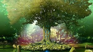 1920x1080 tree wallpaper desktop backgrounds jpg 578 kb
