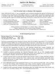 Sample District Sales Plan Vice President Sales Business