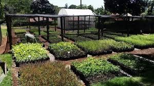 where we work membership includes more than 800 botanic gardens