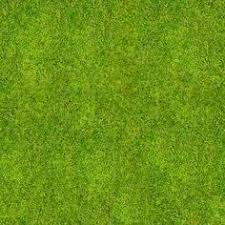 12 Grass Ground Textures Grasses Photoshop and Landscaping