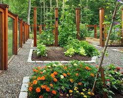 Small Picture Vegetable Garden Design Photos Houzz