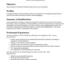 Resume Templates Besturgical Techample Rad Template Free ...