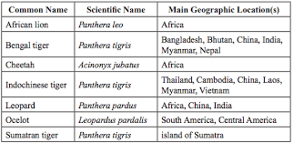 Classification Kaiserscience