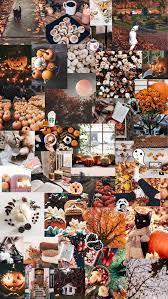 autumn / halloween aesthetic background ...
