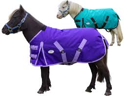 Derby Originals Extreme Elements 1200d Ripstop Waterproof Winter Heavyweight Mini Horse Pony Turnout Blanket With 300g Insulation And Two Year