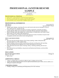 Example Of Professional Summary For Resume Professional Summary Resume Sample Examples Students Hr Vesochieuxo 18