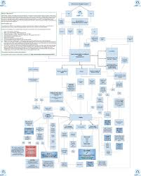 Google My Business Flowchart The Ultimate Guide On How To
