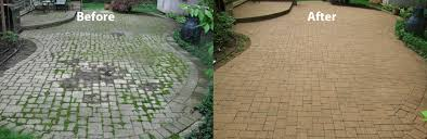 how to prevent weed growth between paving stones