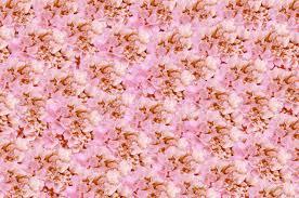 Kunst Achtergrond Met Roze Bloemen Abstract Behang Royalty Vrije