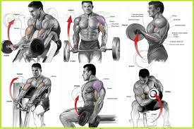 Bulk Up Your Biceps With Our 100 Bicep Curl Challenge Free