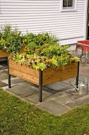 Kitchen Garden Planter Raised Garden Beds Raised Bed Garden Raised Bed Gardening