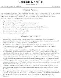 It Consultant Resume Examples Technical Consultant Resume Example